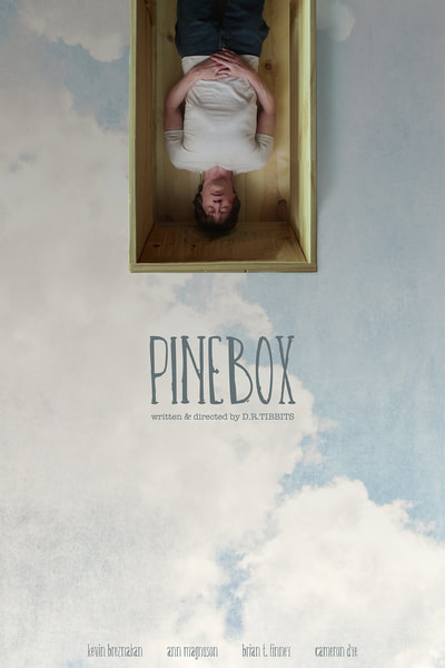 Pinebox Review.
