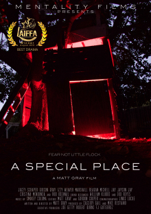 A Special Place Review