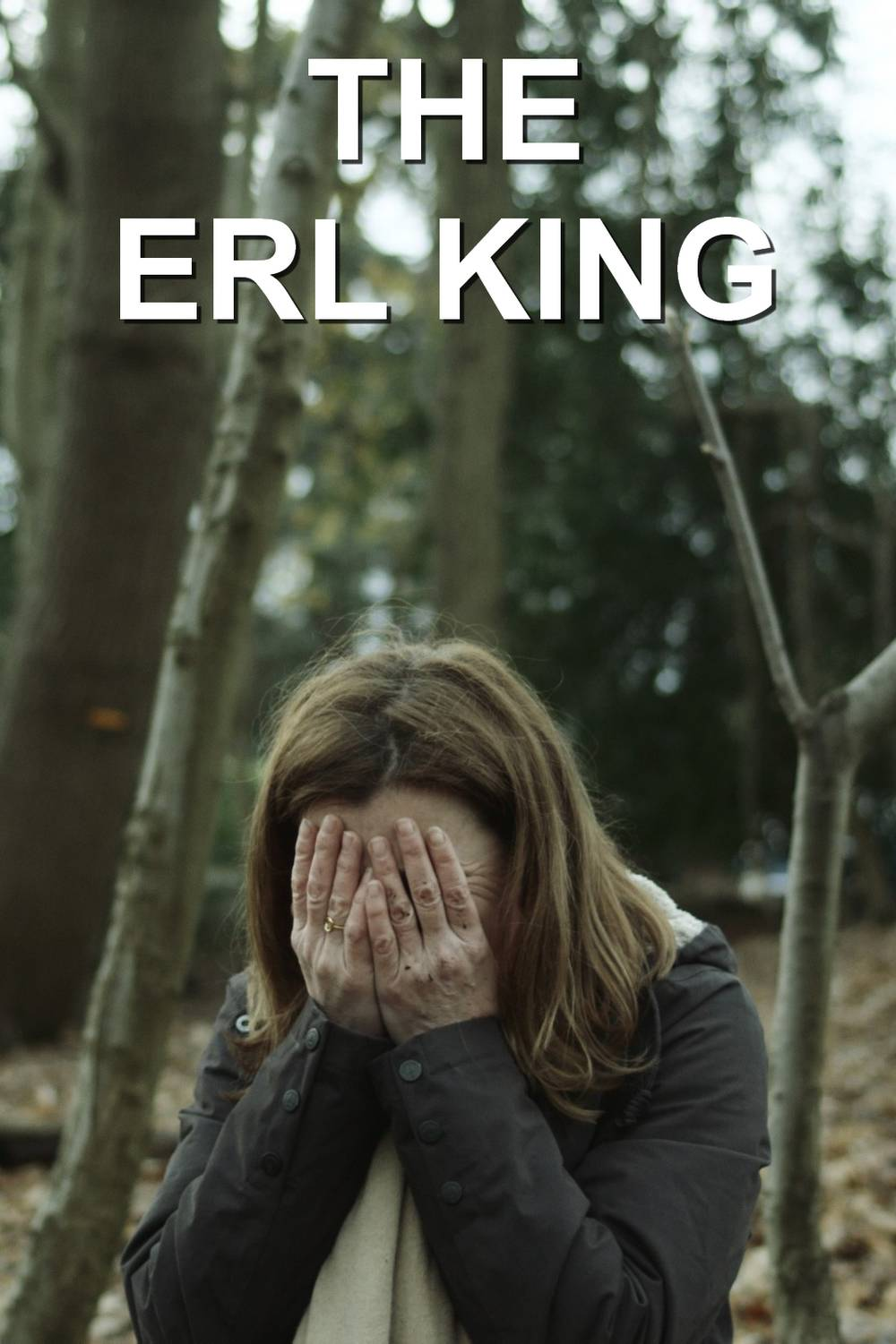 The Erl King poster