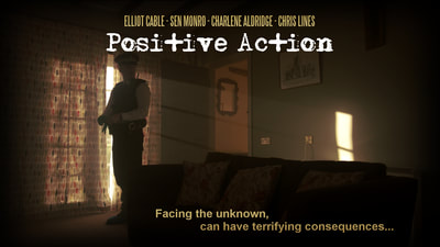 Positive Action Review.